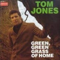 Tom Jones - Detroit City cover